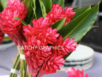 Flower_12 copy
